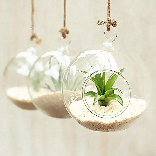 artlass-Lot-de-3-Suspension-Vse-Terrarium-en-verre-Bougeoir-rond-mariage-Home-Deco-Diamtre-10-cm-0