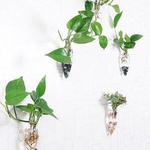 artlass-Lot-de-4-mural--suspendre-en-verre-Fleur-Pot-Vase-Pot-Rcipient-Terrarium-Home-Deco-0