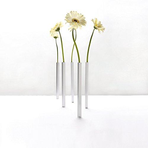 Peleg-Design-PE543-Business-Set-de-5-Vases-magntiques-argents-0