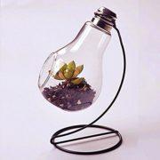 JUNGEN-Vase-en-verre-transparent-suspendu-Vase-Air-Plant-Terrarium-Succulent-Planter-Conteneur-Stand-en-mtal-0-0