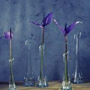 Soliflore-lgant-en-verre-transparent-fait--la-main-avec-base-lourde-20-cm-0-0
