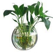 Gosear-295cm-Diamtre-Clear-Acrylique-Ronde-Wall-Mount-Poisson-Bol-Rservoir-Fleur-Plante-Vase-Dcoration-0