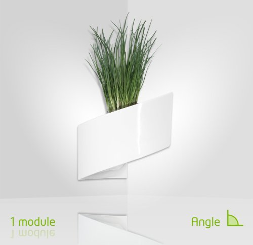 ModulGreen-Pot-pour-plantes-mural-Design-Intrieur-Extrieur-Blanc-0