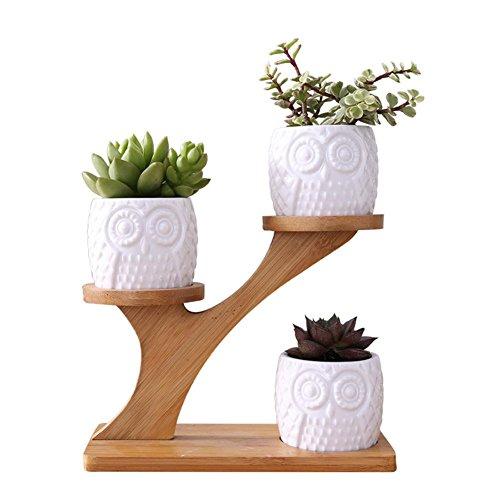 4-En-1-Lot-De-Vase-Pot-De-Fleurs-Simple-Cratif-Blanc-Plante-Succulente-En-Cramique-Motif-Bouteille-Treetop-Bambou-tagre-Planteur-Cratif-Ornement-Sans-Plante-pour-Dcoration-Home-Office-Salon-0