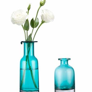 Mkouo-Lot-de-2-Vase-de-fleurs-Verre-Couleur-turquoise-0