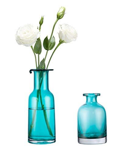 achat mkouo lot de 2 vase de fleurs verre couleur turquoise. Black Bedroom Furniture Sets. Home Design Ideas