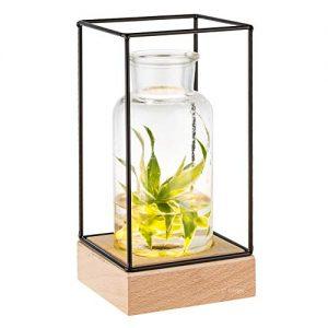 Gadgy-l-Vase-en-verre-transparant-avec-lumire-Vase-dcoratif-transparent-avec-base-en-bois-naturel-et-cadre-en-mtal-225-x-108-x-108-0